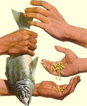 1.Without money, people exchange merchandise for merchandise, without value equivalence. For exemple, exchange of fish for corn.
